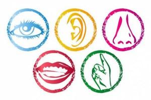 Disabilità sensoriale anno scolastico 2021-2022